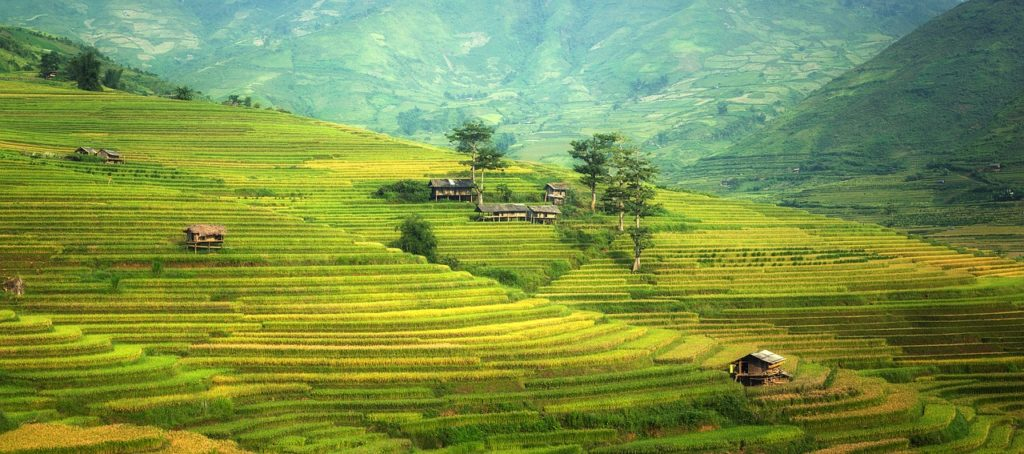 The natural beauty of China's rice fields. See this today when you receive your 10 year china visa!